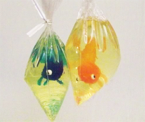 Goldfish in a bag soap DIY