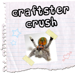 Craftster Crush petskin