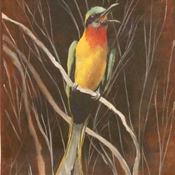 Bee Eater Painting