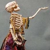 Skeleton Bird Woman Figure