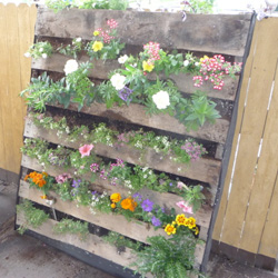 batgirl turned her tiny deck into a green oasis partly with this awesome garden bed made from an old pallet - Pallet Garden Bed