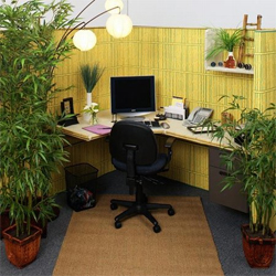 Crafted cubicle