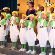 Oompa Costumes